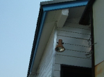 屋根塗装0717